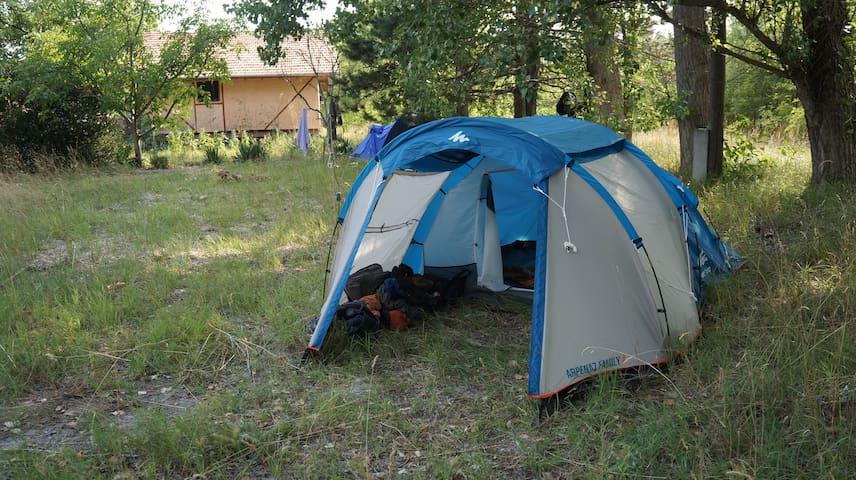 Freedom Tent - Csólyospálos - Telt