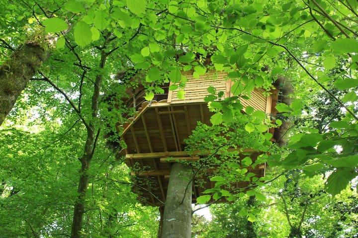Cabane écureuil, romantisme, piscine et jacuzzi - Savigny - Ağaç Ev
