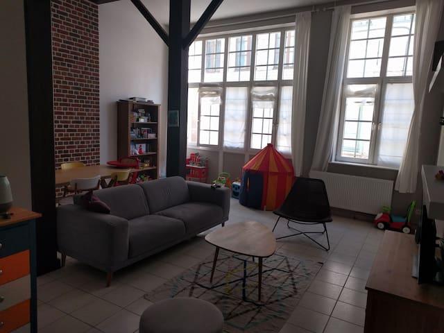 Grand appartement de charme - Valenciennes - Ortak mülk