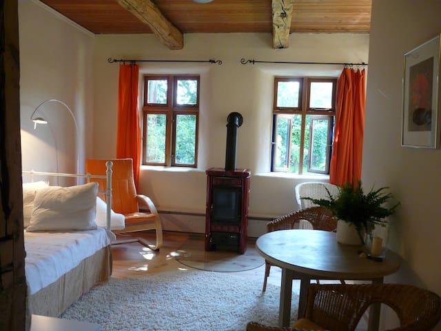 Bio- FeWo mit Kaminofen, Sauna und Wintergarten - Bleckede - Appartement en résidence