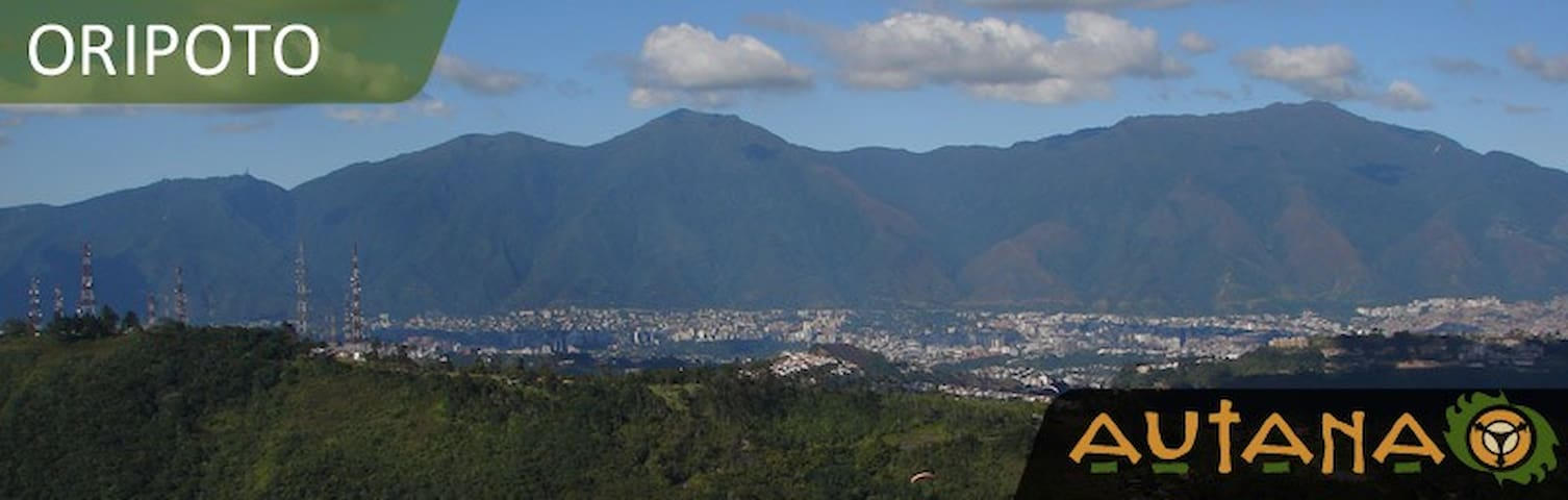 A SAFETY PLACE TO STAY IN CARACAS - Miranda - 公寓