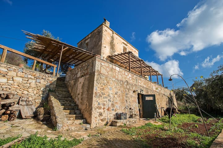 The Olive Farm - Litsarda