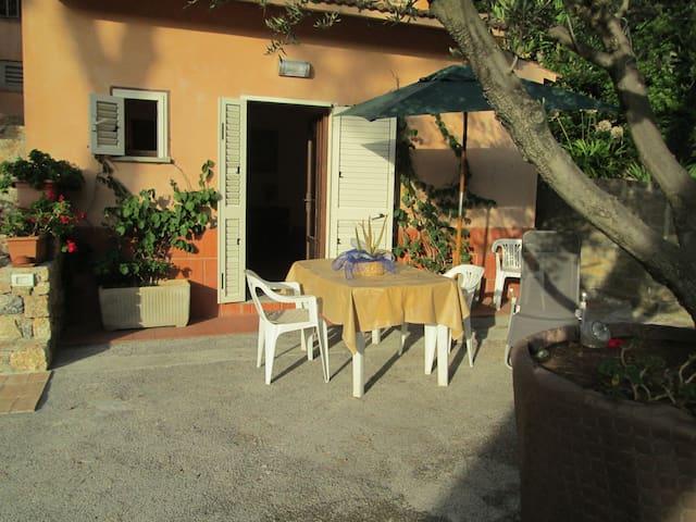 SUL MARE CONFORTEVOLE MONOLOCALE CON PARCHEGGIO - Porto Santo Stefano - Apartemen