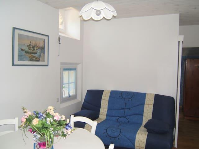 Gîte 2/4 personnes en campagne - Labruguière - Appartement
