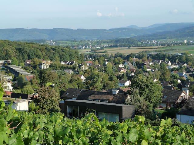 Modern architecture in vineyard - Biel-Benken - Gastsuite