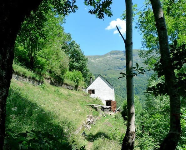 Old barn in the Pyrenees - Le Port - Ev