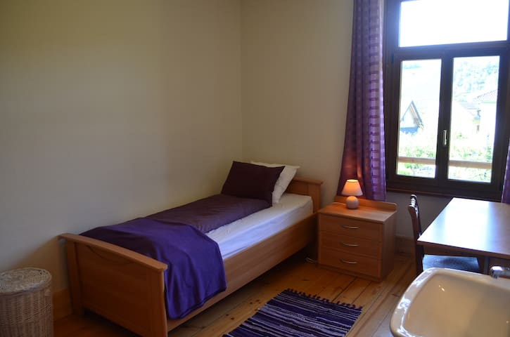 Comfortable Single Room in Traditional Swiss Villa - Lavey-Morcles - Villa
