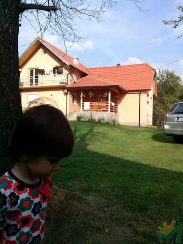 Cvijovic - Mokra Gora