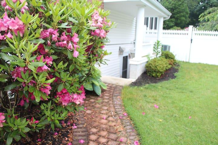 Private Suite Near Stony Brook Univ and Port Jeff - Port Jefferson - Casa