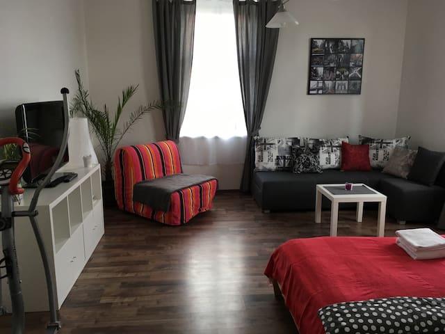 Apartment P.R. - Praha - Leilighet
