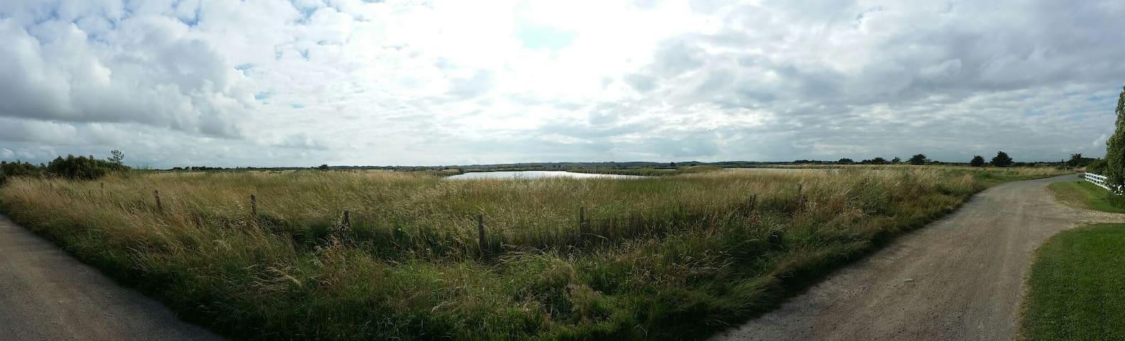 Chambre au bord des marais - L'Île-d'Olonne - Dom
