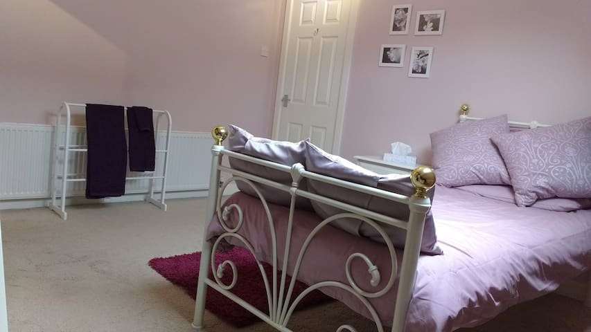 Charming Edwardian home single room - Sheffield - Hus