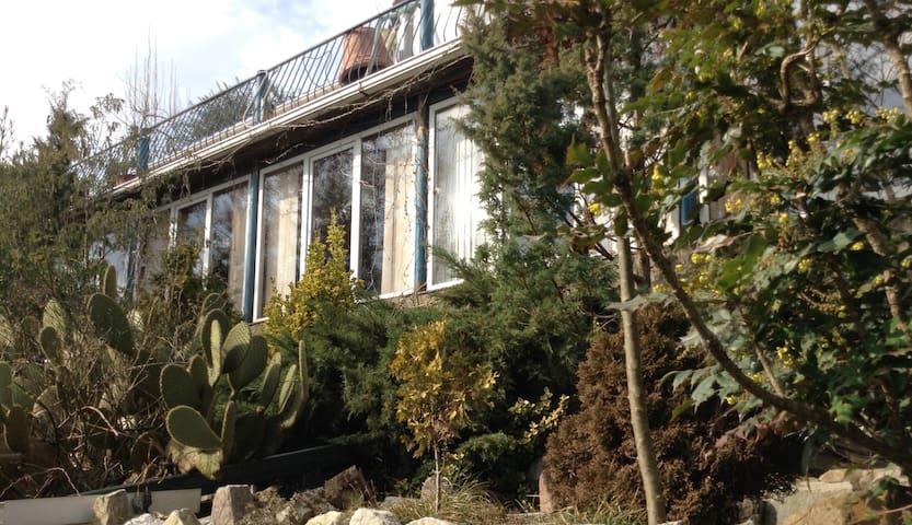 Тропический сад - Lazarevskiy - Villa