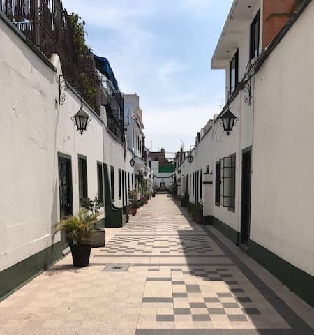 Lovely Cozy House in the heart of La Roma! - Mexico City - Hus