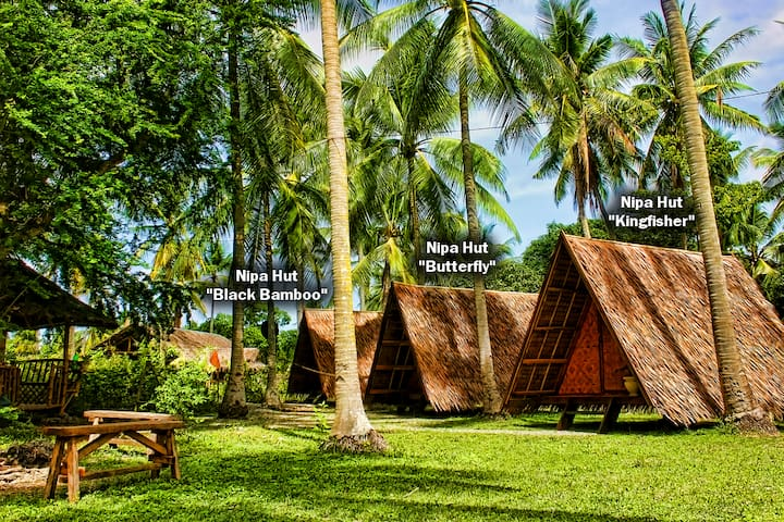 "ARCHERY-ASIA Nipa Hut ""Black Bamboo"" in Moalboal - PH - Chata"