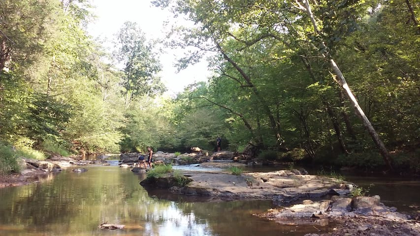 Wooded waterfront near LU, LC, RC & Sweet Briar - Madison Heights - Leilighet