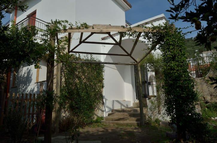 Il Giardino del Sole - Appartamento Mirto - Roccarainola - Bed & Breakfast