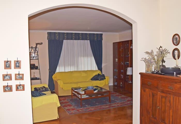 Beautiful, classical apartment Ilirska Bistrica - Ilirska Bistrica - Departamento