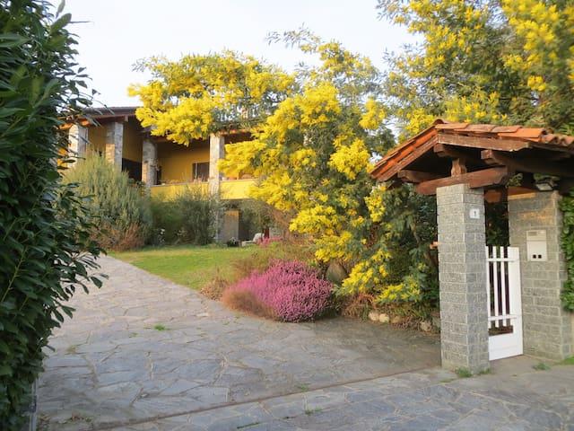 Casa in collina vista Alpi zona lago Maggiore/Orta - Gattico - Maison