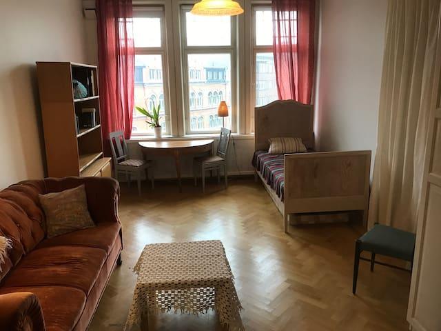 Sekelskifteshus i centrala Lund - Lund - Leilighet