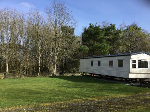 Woodland Retreat - Beechwood - Devon - Lainnya