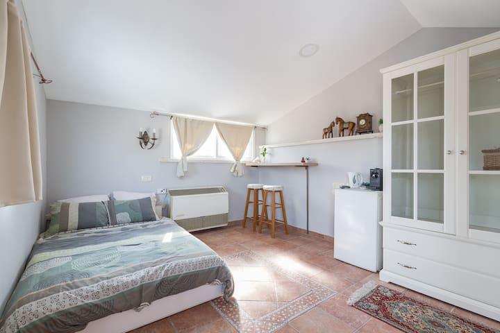 Cozy, Comfortable and Spacious room near Tel Aviv - Rishon LeTsiyon - Villa