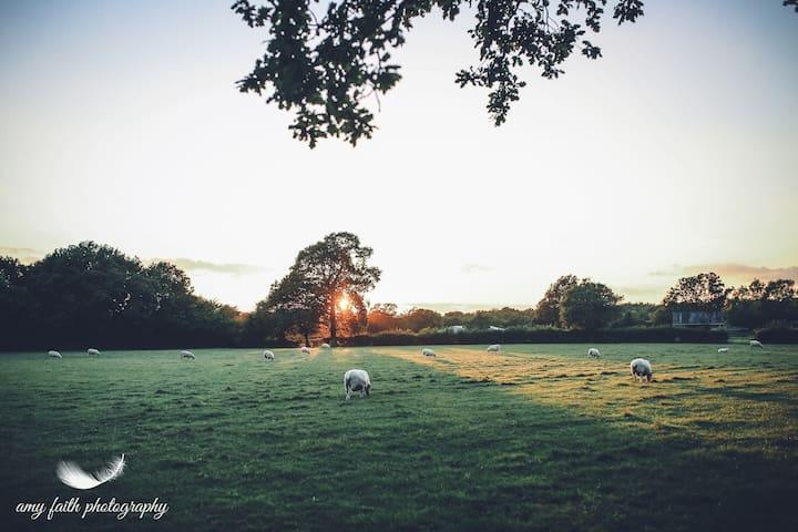 Green Farm Barn Midweek - Shadoxhurst - Casa
