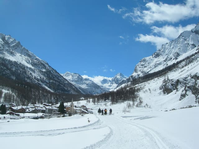 Lovely studio apt in the Gran Paradiso park - Rhemes-notre-dame - Apartment