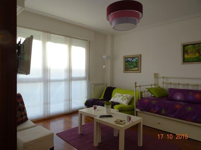 """Apartamento """"loft"""" en Laguardia. Nº R. T. EVI0024 - Guardia - Loft"""