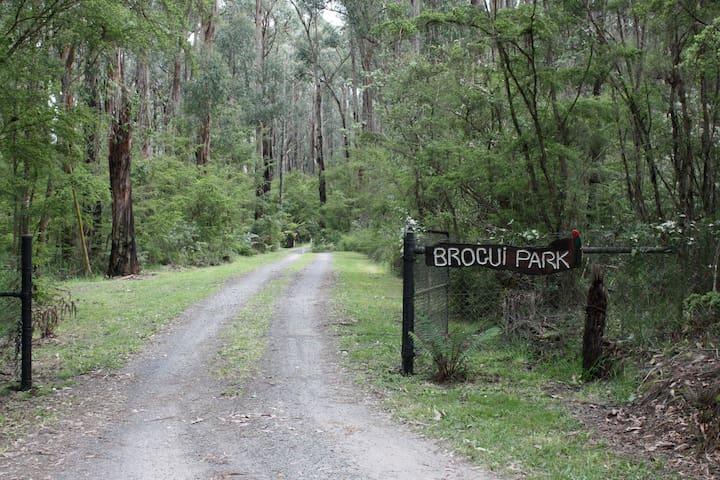 Brogui magical bushland retreat - Warragul - Ev