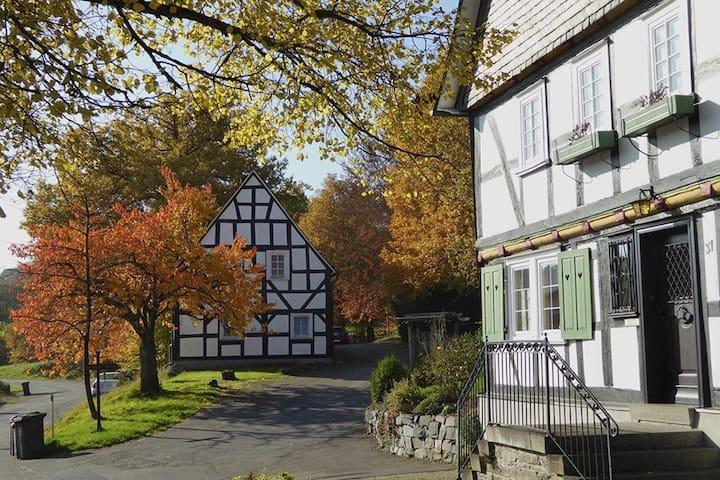 Ferienwohnung in historischem Ortskern nahe Siegen - Freudenberg - Квартира