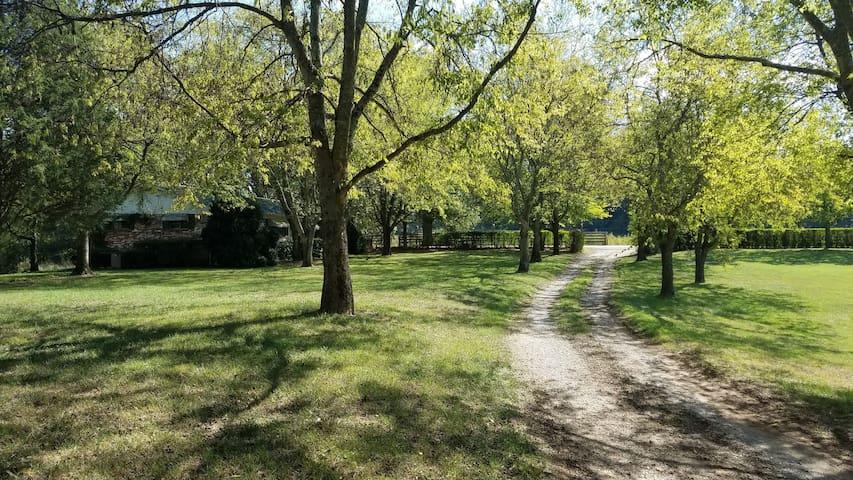 The Bates Bend Farm - Charleston - Huis