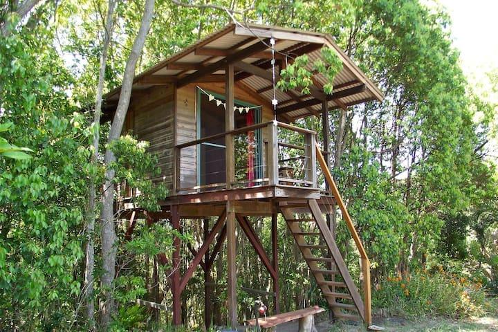 Treehouse with views, Byron hinterland - Main Arm - Rumah Pohon