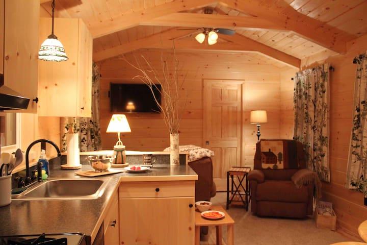 Romantic Adirondack Cabin with Gorgeous Lake Views - Saranac Lake - Hytte