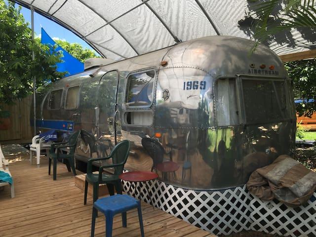 Vintage Airstream near Everglades - Homestead