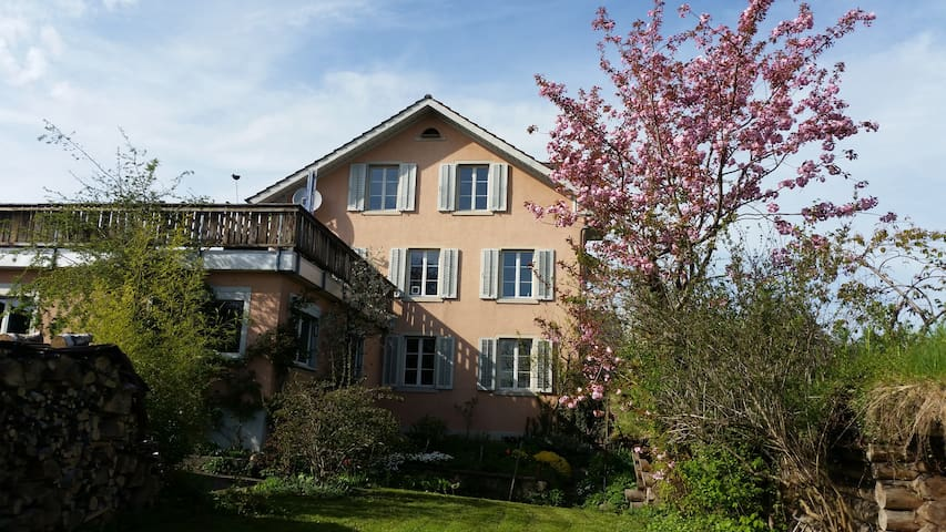 Sunny and lovely apartment - Hinwil - 公寓