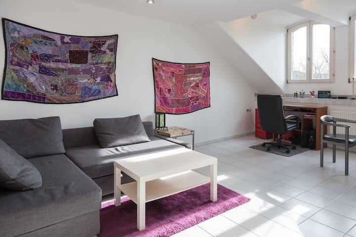 City Centre - Big independent room - Bonn - Lejlighed
