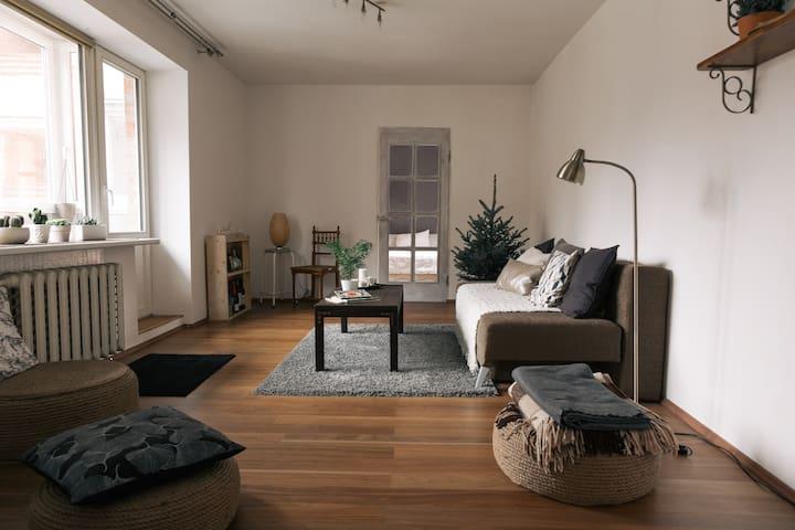 Cozy bright flat nearby oldtown - Vilnius