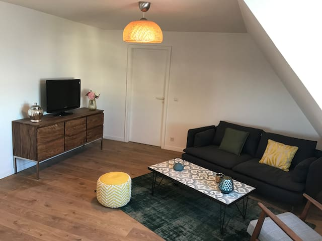 Cozy 2 rooms with garage in 2 steps of the center - Hœnheim - Leilighet