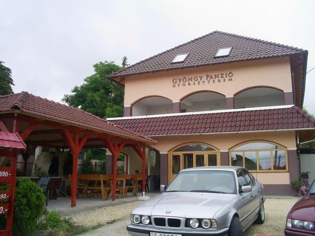 Gyöngy Panzió és gyorsétterem - Velence - Albergue