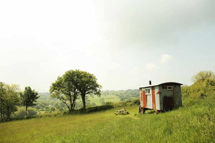 Gwdi Hw. Step back in time in our shepherds huts - Llwyn-y-groes - Other