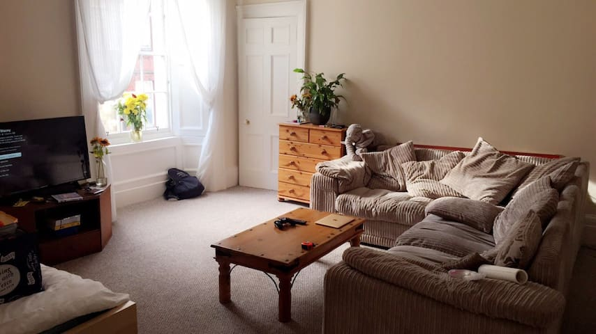 Large flat in Stirling town centre! - Stirling - Apartament