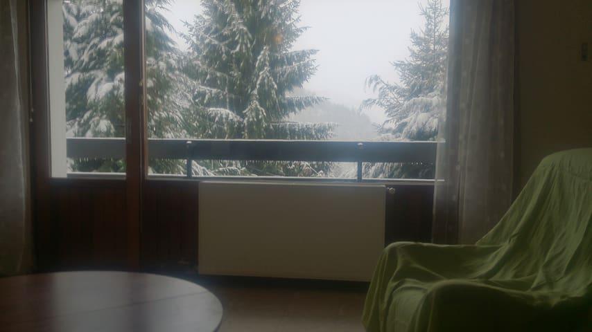 48 m2 3 pcs pkg s-sol balcon/terrasse - Eaux-Bonnes