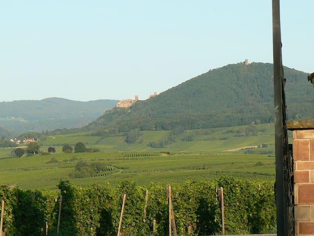 GÎTE 4 étoiles   LE POMMIER   BELLES PRESTATIONS - Bergheim - Cabaña en la naturaleza
