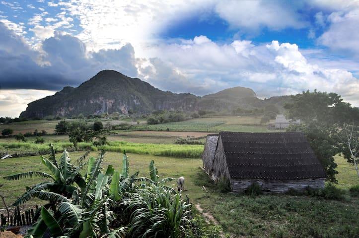 Villa koqui y Any - Vinales - 別荘