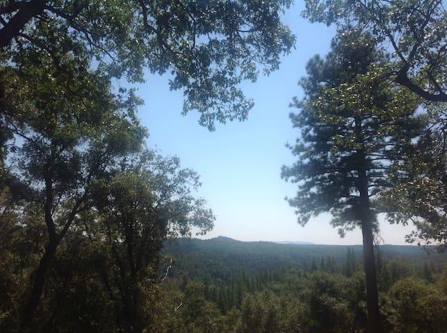 SquirrelsNest Mountain Cabin - Somerset - Kabin