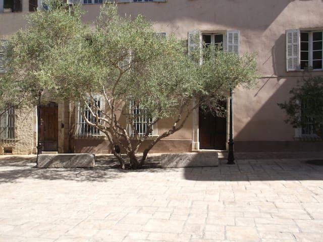 appartement sur la place histhorique de brignoles - Brignoles - Apartamento