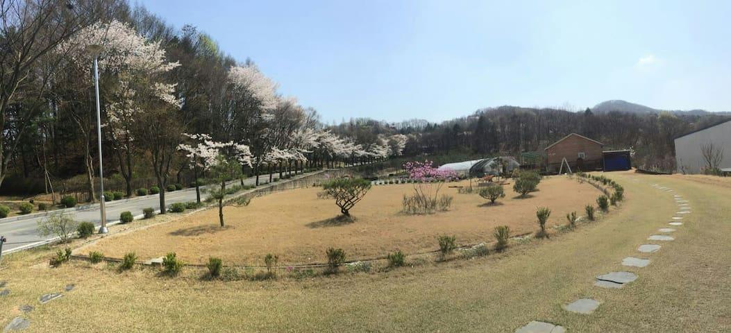 Garden House near Ski Resorts독채 - 龍仁市 - 別荘