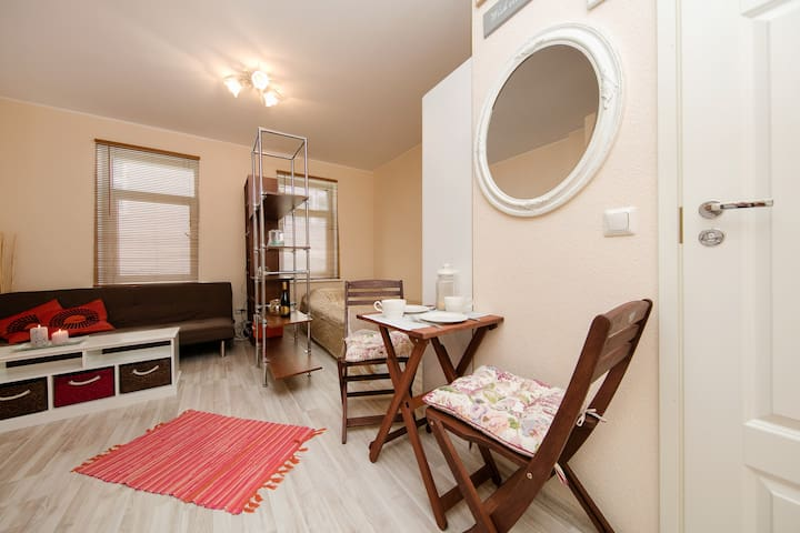 Flat next to center, with bicycles! - Tallinn