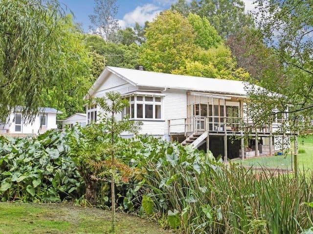 House on 3.5 acres reduced rental for dog care - Karaka - 獨棟